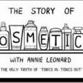 l'histoire des cosmétiques